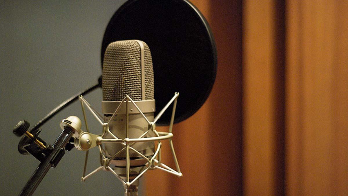 I microfoni a condensatore sfruttano una diversa tecnologia di trasduzione del suono. Questi li rende più adatti a catturare il dettaglio sonoro, come nel caso delle voci o degli strumenti ad arco.