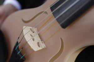 Il violino brevettato da Alessandirni sfrutta le proprietà acustiche e risonanti della fibra tessuta dai ragni.